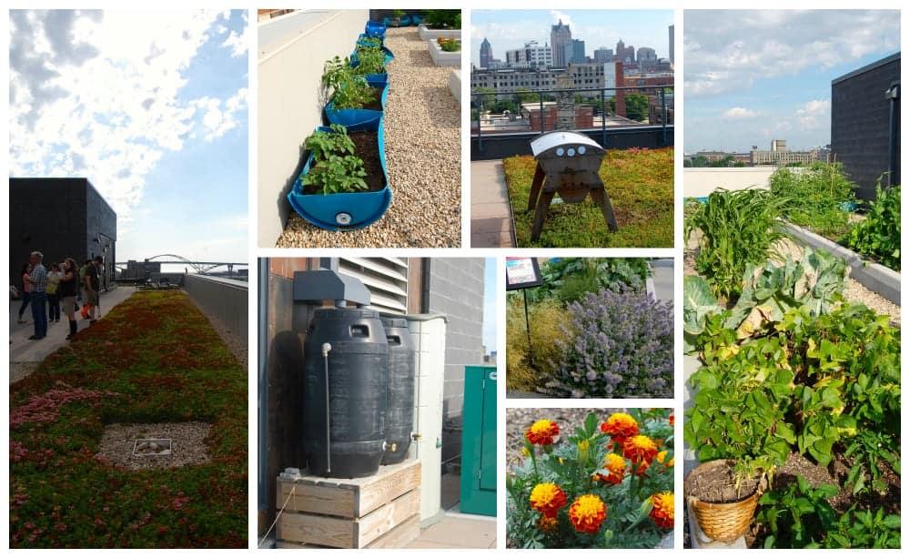roof_garden