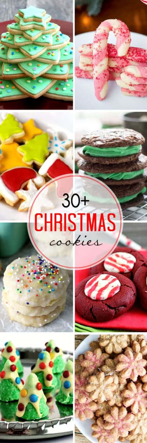 Something for just about everyone! So many delicious amazing options for holiday baking!