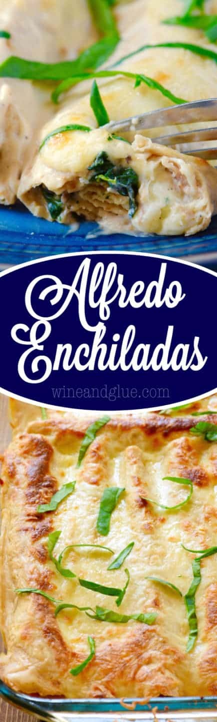 These Alfredo Enchiladas are such a delicious and easy dinner to throw together. Total comfort food!