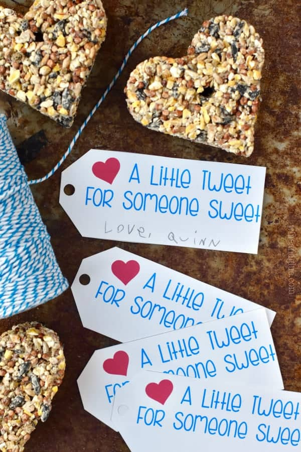 These Valentine's Day Bird Feeder Printable Tags are perfect for using with these Heart Bird Feeders and gifting at Valentine's Day!