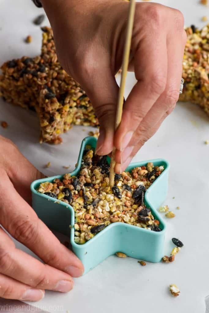 making a homemade bird feeder