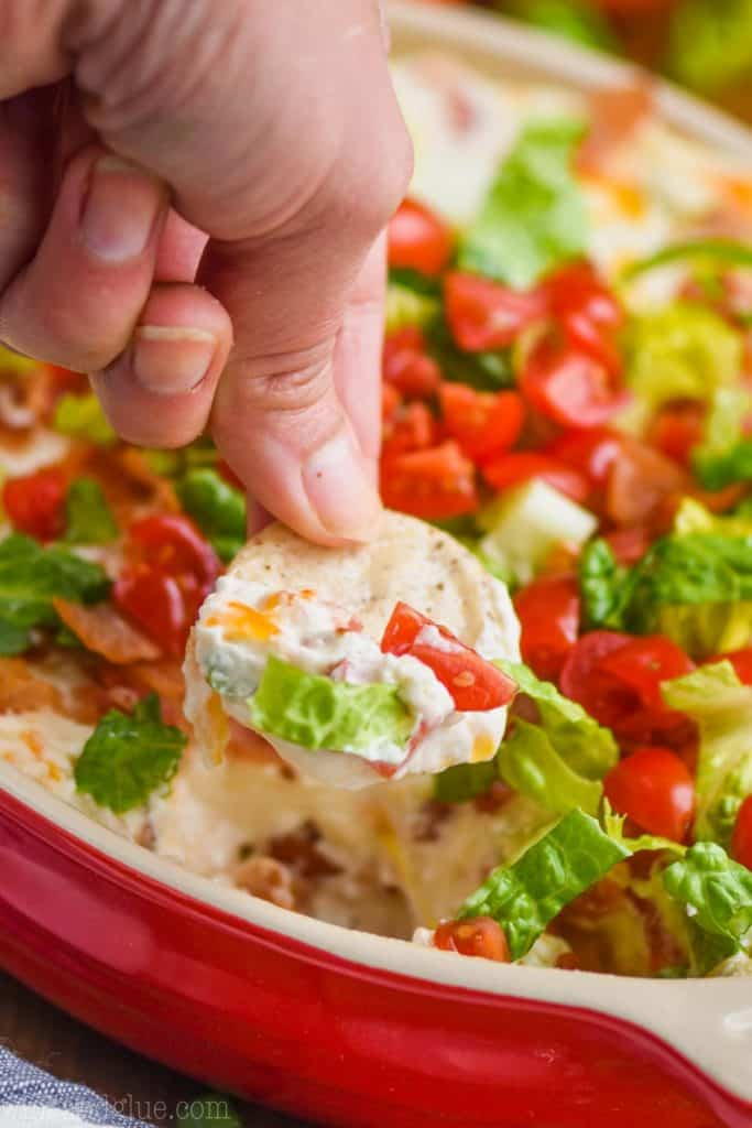 up close view of a hand holding a round cracker that has been dipped in blt dip